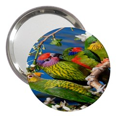 Beautifull Parrots Bird 3  Handbag Mirrors
