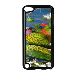 Beautifull Parrots Bird Apple Ipod Touch 5 Case (black)