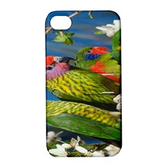 Beautifull Parrots Bird Apple iPhone 4/4S Hardshell Case with Stand