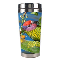 Beautifull Parrots Bird Stainless Steel Travel Tumblers