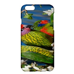 Beautifull Parrots Bird Apple iPhone 6 Plus/6S Plus Hardshell Case