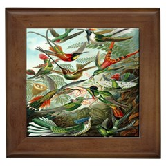 Beautiful Bird Framed Tiles