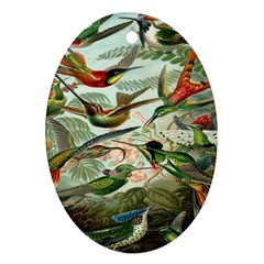 Beautiful Bird Ornament (Oval)