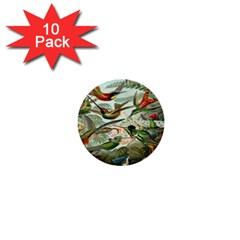 Beautiful Bird 1  Mini Buttons (10 pack)