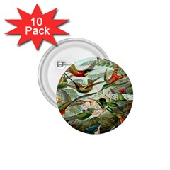 Beautiful Bird 1 75  Buttons (10 Pack)