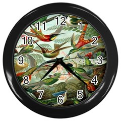 Beautiful Bird Wall Clocks (Black)