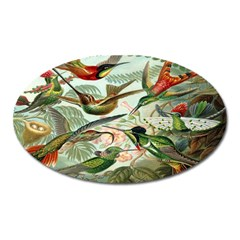 Beautiful Bird Oval Magnet
