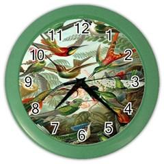 Beautiful Bird Color Wall Clocks
