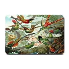 Beautiful Bird Small Doormat
