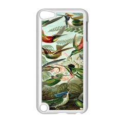 Beautiful Bird Apple Ipod Touch 5 Case (white)