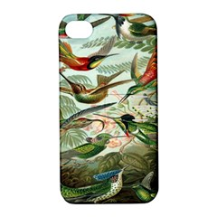 Beautiful Bird Apple iPhone 4/4S Hardshell Case with Stand
