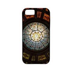 Black And Borwn Stained Glass Dome Roof Apple iPhone 5 Classic Hardshell Case (PC+Silicone)