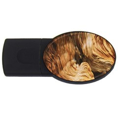 Brown Beige Abstract Painting USB Flash Drive Oval (4 GB)
