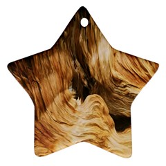 Brown Beige Abstract Painting Star Ornament (two Sides)