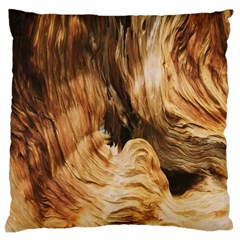 Brown Beige Abstract Painting Large Cushion Case (two Sides)