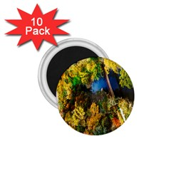Bridge River Forest Trees Autumn 1 75  Magnets (10 Pack)