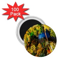 Bridge River Forest Trees Autumn 1.75  Magnets (100 pack)