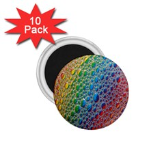Bubbles Rainbow Colourful Colors 1 75  Magnets (10 Pack)