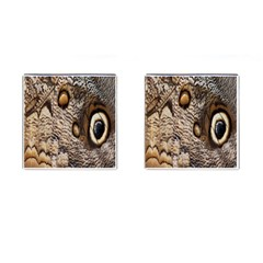 Butterfly Wing Detail Cufflinks (Square)