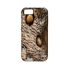 Butterfly Wing Detail Apple Iphone 5 Classic Hardshell Case (pc+silicone)