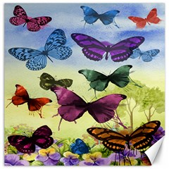 Butterfly Painting Art Graphic Canvas 20  x 20