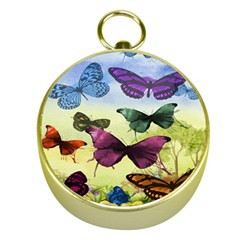 Butterfly Painting Art Graphic Gold Compasses