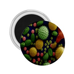 Colorized Pollen Macro View 2.25  Magnets