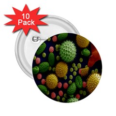 Colorized Pollen Macro View 2.25  Buttons (10 pack)