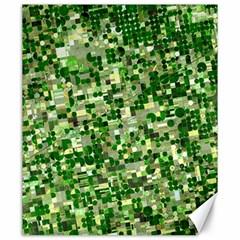 Crops Kansas Canvas 20  X 24