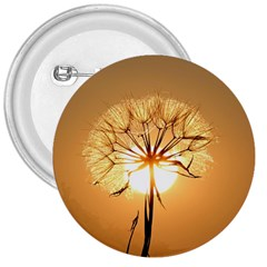 Dandelion Sun Dew Water Plants 3  Buttons