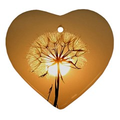 Dandelion Sun Dew Water Plants Ornament (Heart)