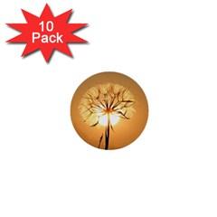 Dandelion Sun Dew Water Plants 1  Mini Buttons (10 Pack)