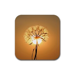 Dandelion Sun Dew Water Plants Rubber Square Coaster (4 pack)