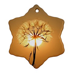 Dandelion Sun Dew Water Plants Ornament (Snowflake)