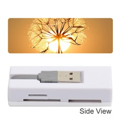 Dandelion Sun Dew Water Plants Memory Card Reader (Stick)