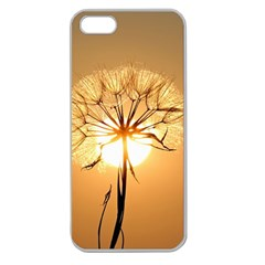 Dandelion Sun Dew Water Plants Apple Seamless iPhone 5 Case (Clear)