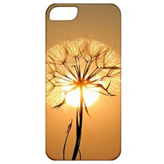 Dandelion Sun Dew Water Plants Apple iPhone 5 Classic Hardshell Case