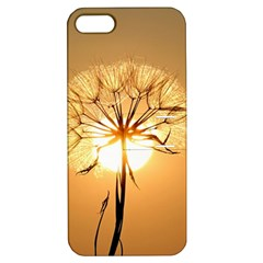Dandelion Sun Dew Water Plants Apple iPhone 5 Hardshell Case with Stand