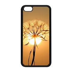 Dandelion Sun Dew Water Plants Apple iPhone 5C Seamless Case (Black)