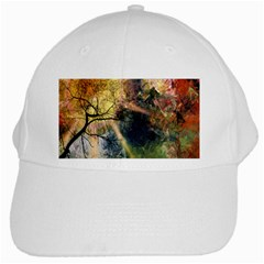 Decoration Decorative Art Artwork White Cap