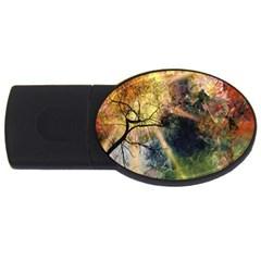 Decoration Decorative Art Artwork USB Flash Drive Oval (2 GB)