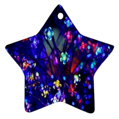 Decorative Flower Shaped Led Lights Star Ornament (two Sides)