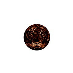 Eye Of The Tiger 1  Mini Magnets