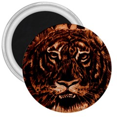 Eye Of The Tiger 3  Magnets