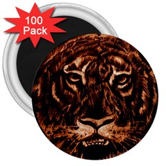 Eye Of The Tiger 3  Magnets (100 pack)