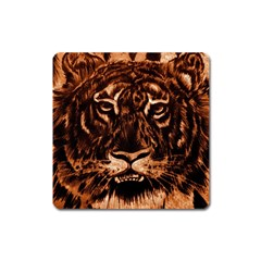 Eye Of The Tiger Square Magnet