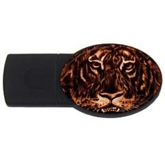 Eye Of The Tiger USB Flash Drive Oval (4 GB)