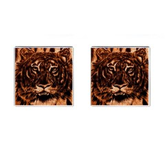 Eye Of The Tiger Cufflinks (Square)