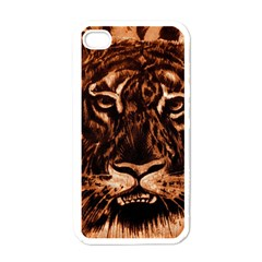 Eye Of The Tiger Apple Iphone 4 Case (white)