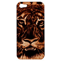 Eye Of The Tiger Apple Iphone 5 Hardshell Case
